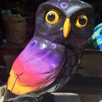 The Wise Renewab-owl - 8 Union St (near Lush) Bath UK