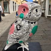 Having a hoot at work - Barthlett St (near Cafe Lucca)