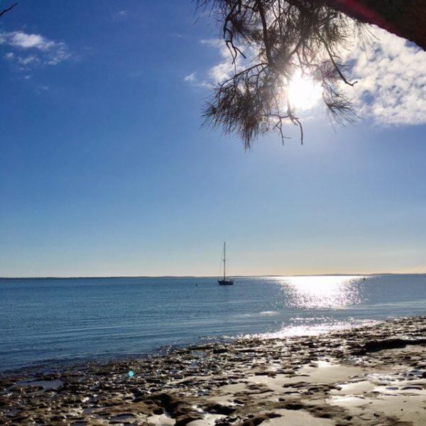 Morning at Vincentia