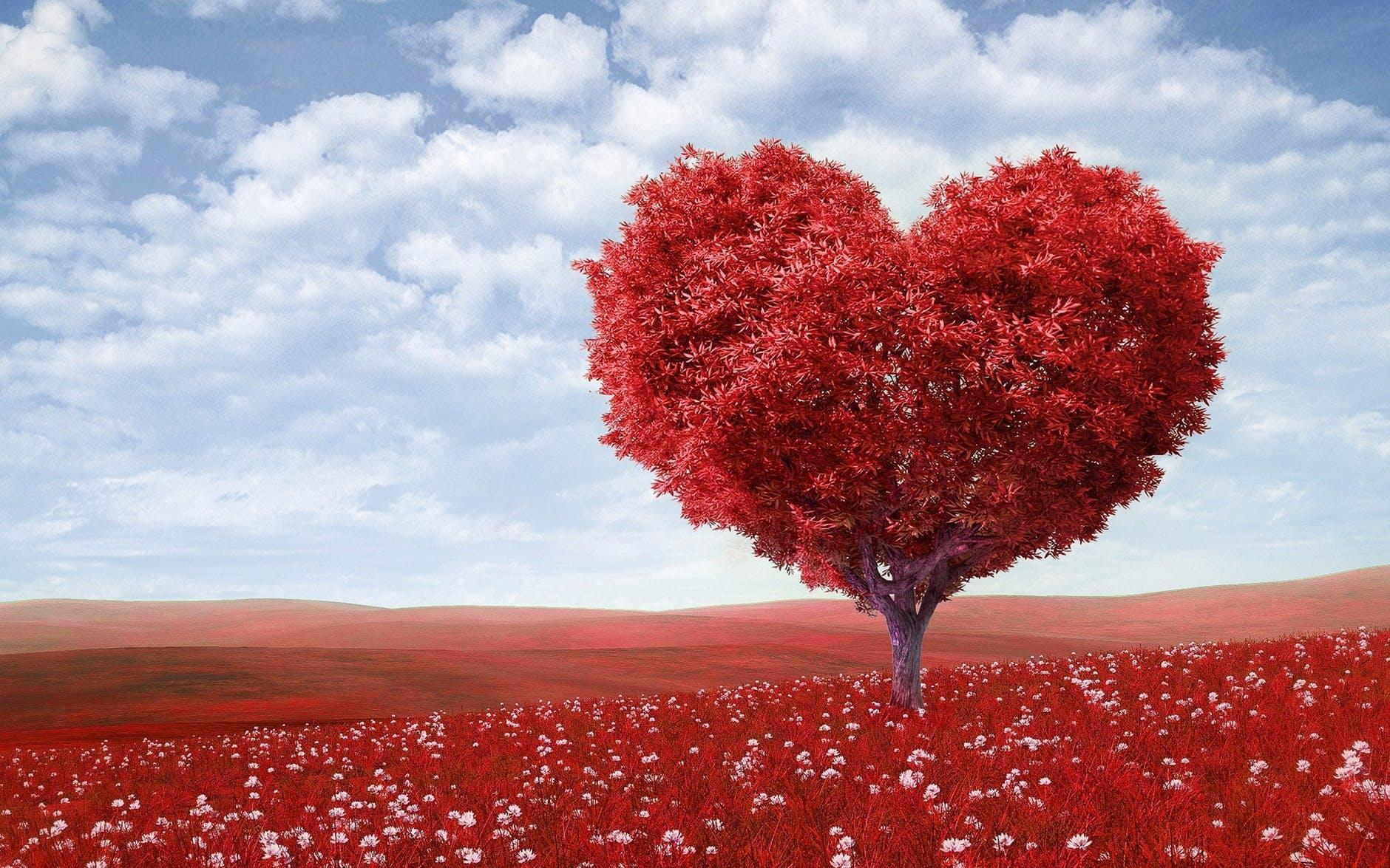 A big heart full of love