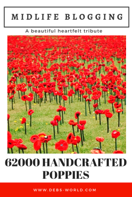 62000 poppies made with love