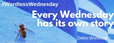 Wordless Wednesday banner for my blog