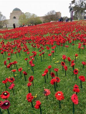 62000 poppies at Australian War Memorial Canberra