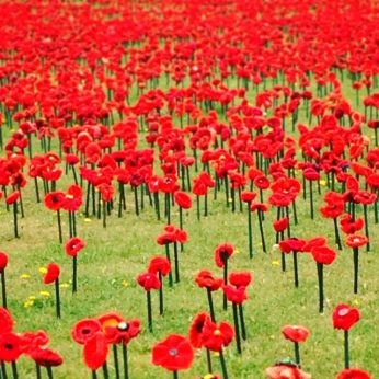 Honour Their Spirit At the Australian War Memorial