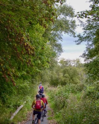 Cycling through forest paths
