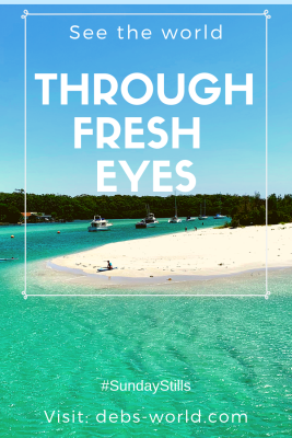 See the world through fresh eyes