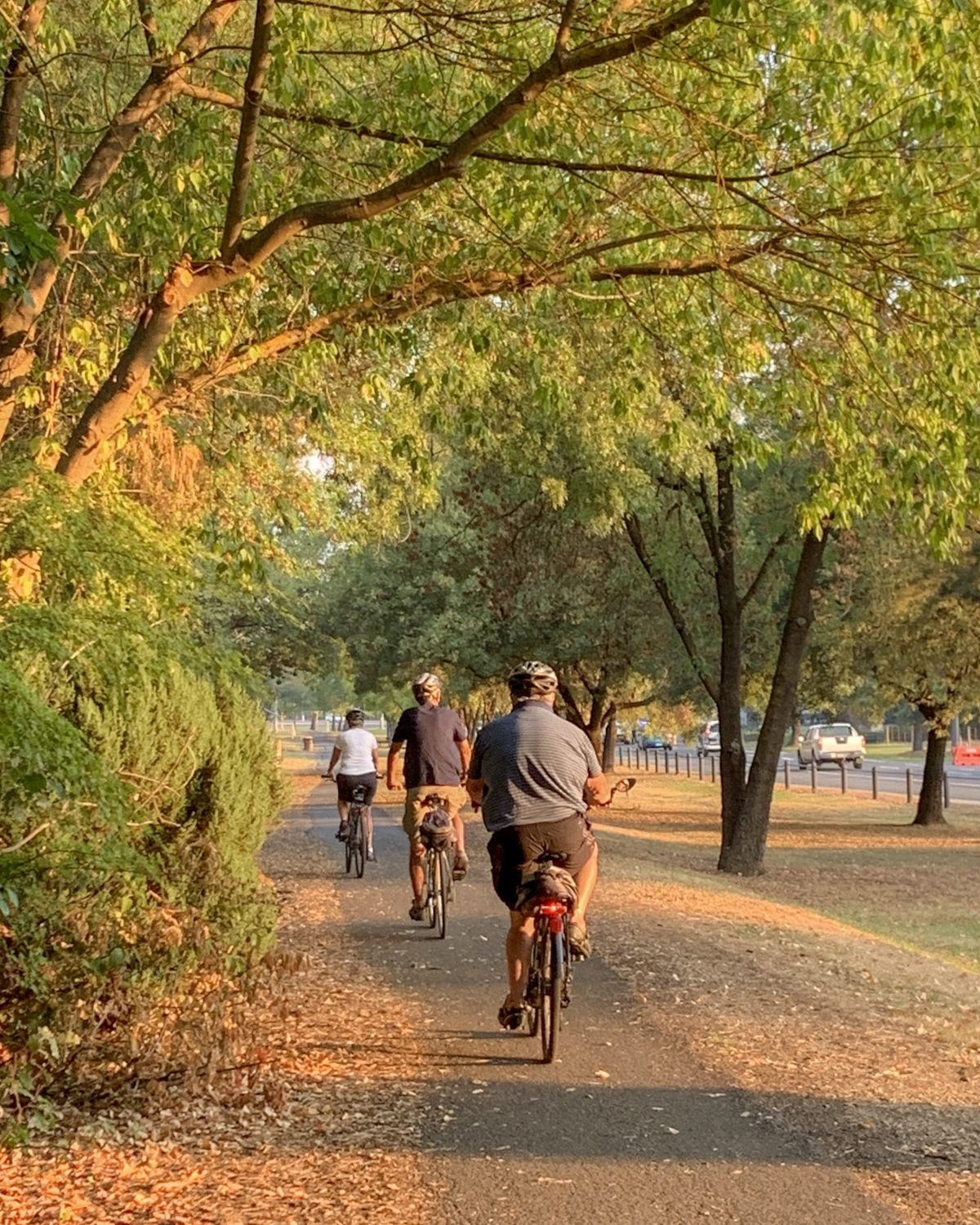 Cycling in Myrtleford Victoria on the Murray to the Mountains Rail Trail