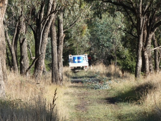 Work has started on Tumbarumba to Rosewood Rail Trail