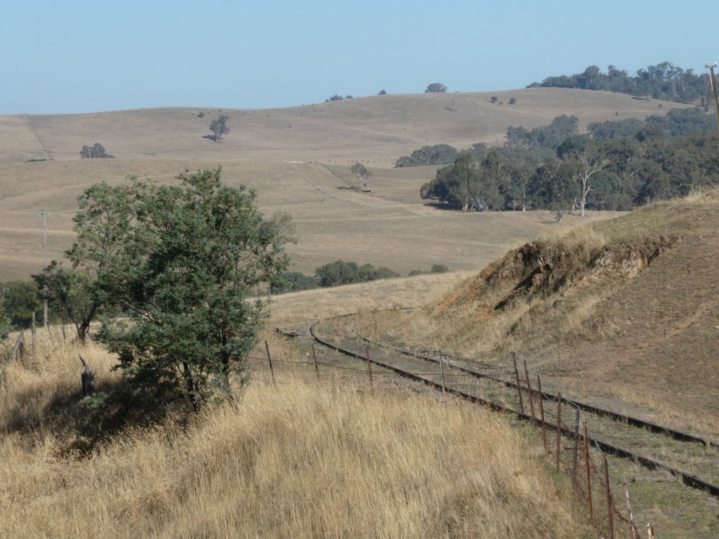 Views along the Tumbarumba to Rosewood Rail Trail