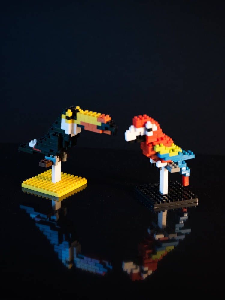 Tropical birds made fromnanoblocks