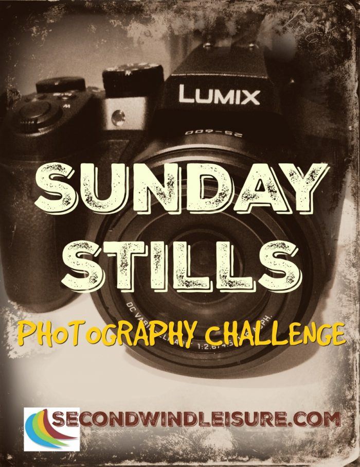 Sunday Stills photo challenge