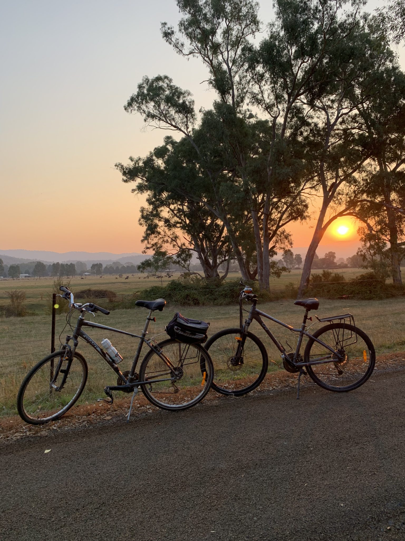 Sunset along the rail trail at Myrtleford