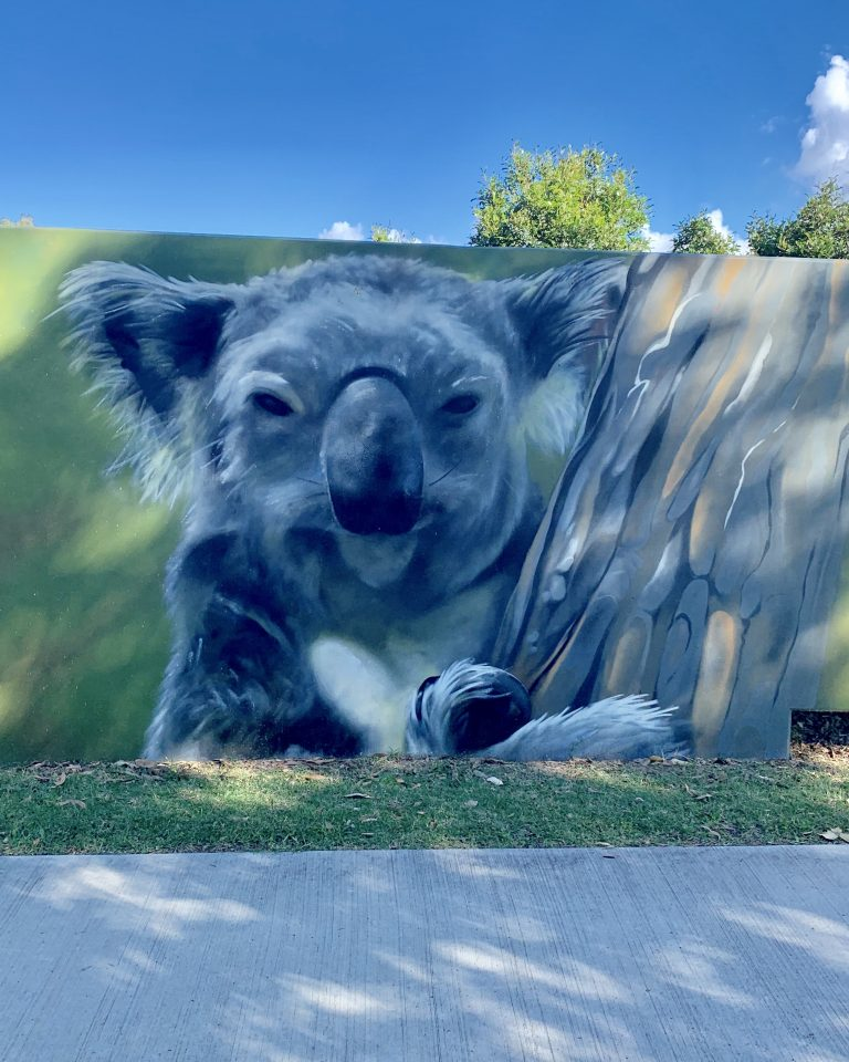 Art along the path - koala