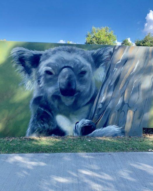 Art along the path - koala