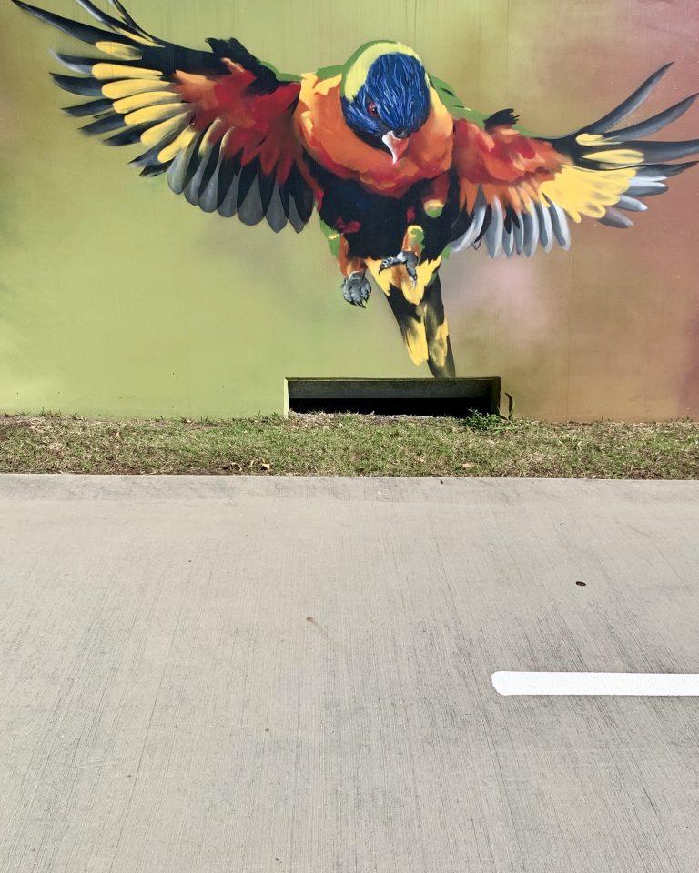Art along the path - parrot