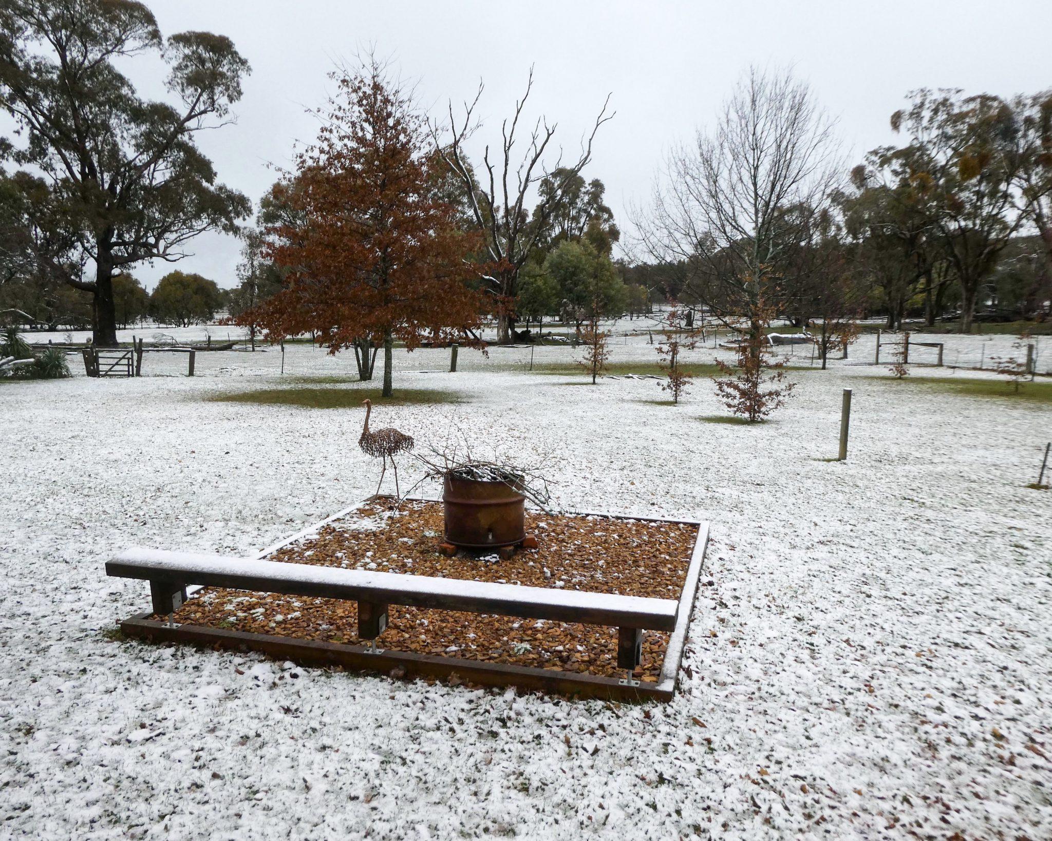 Tumbarumba becomes a winter wonderland – Wordless Wednesday