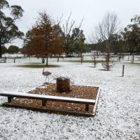 Tumbarumba becomes a winter wonderland - Wordless Wednesday