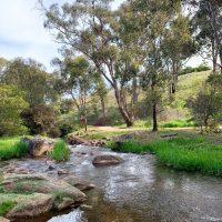 Tumbarumba creek