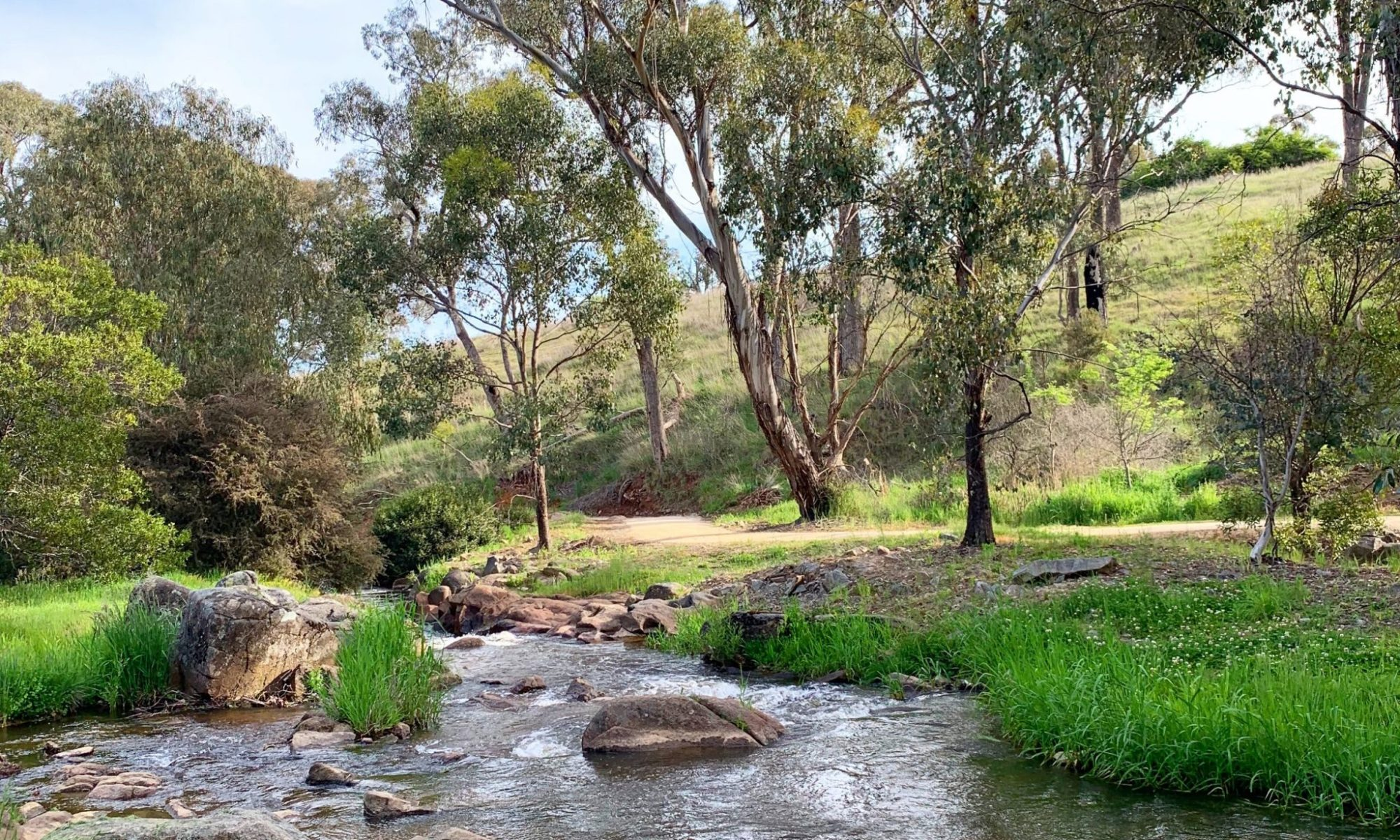 Tumbarumba creek