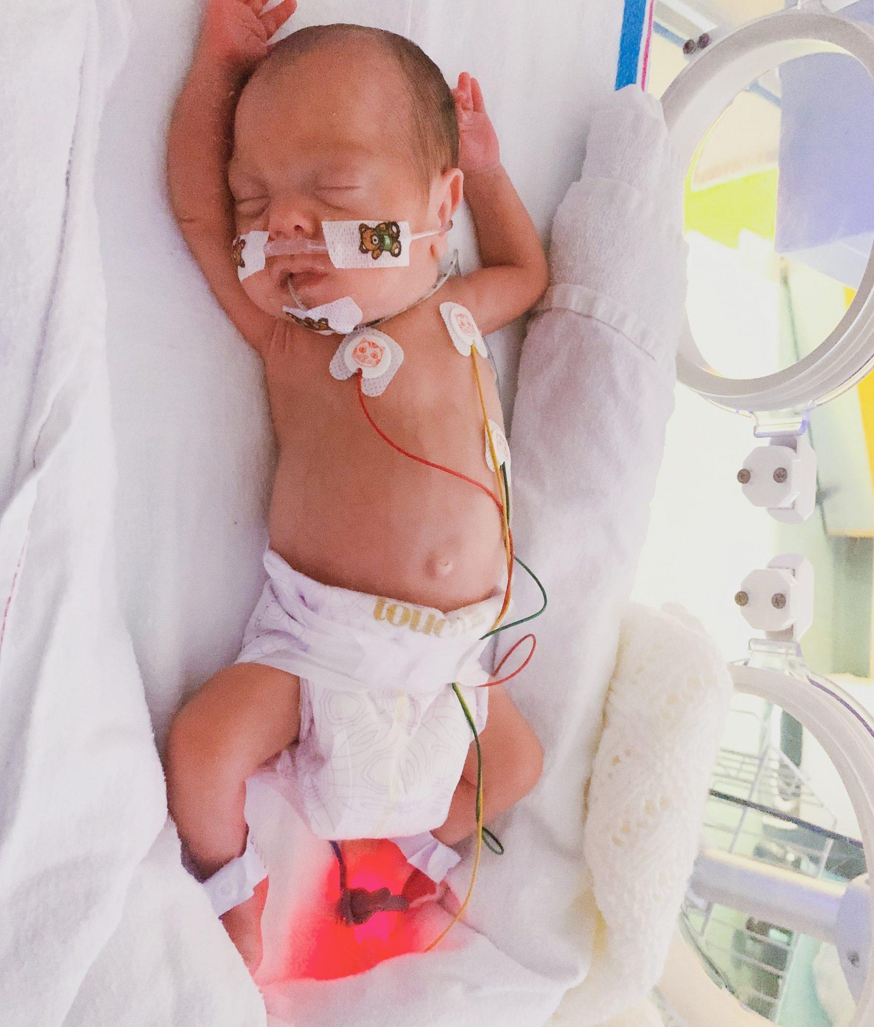 Dottie 6 weeks old
