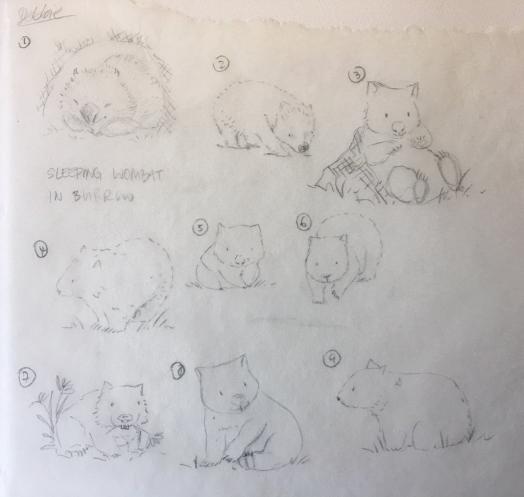 Wombat sketches