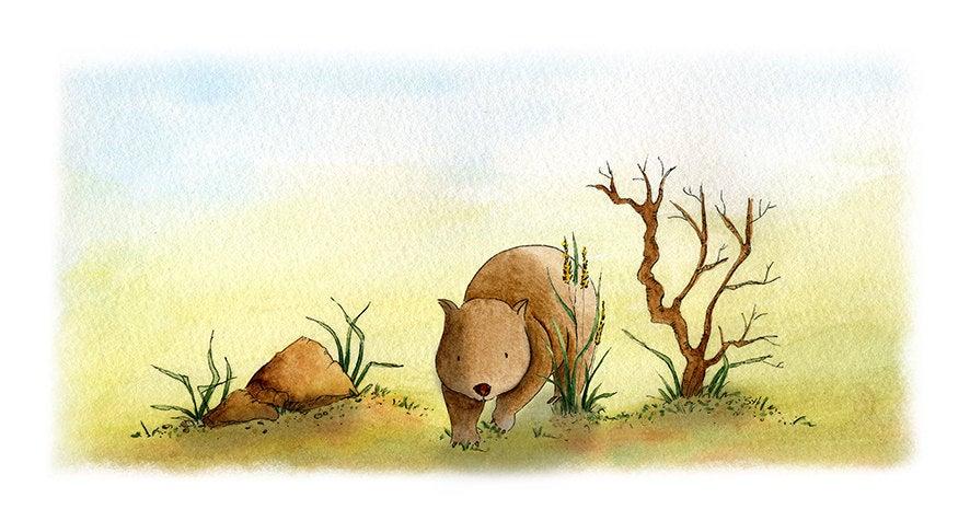 Wombat pics