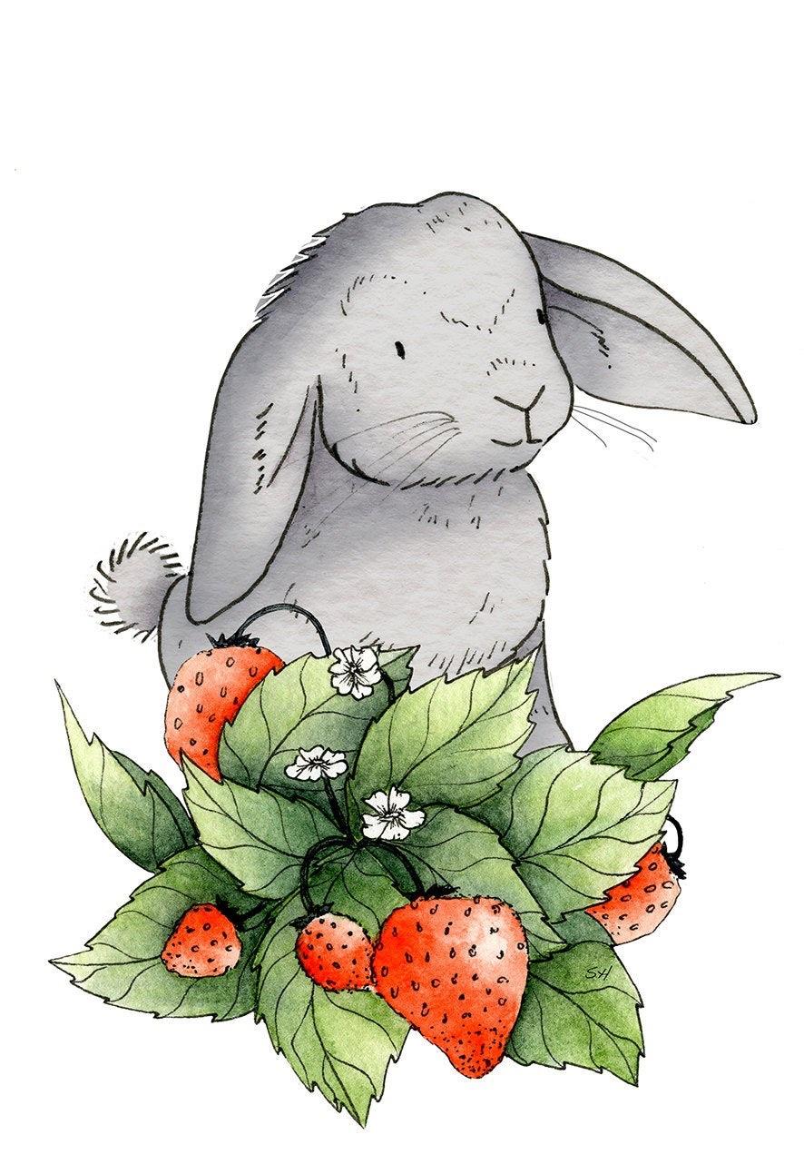 Bruce the rabbit