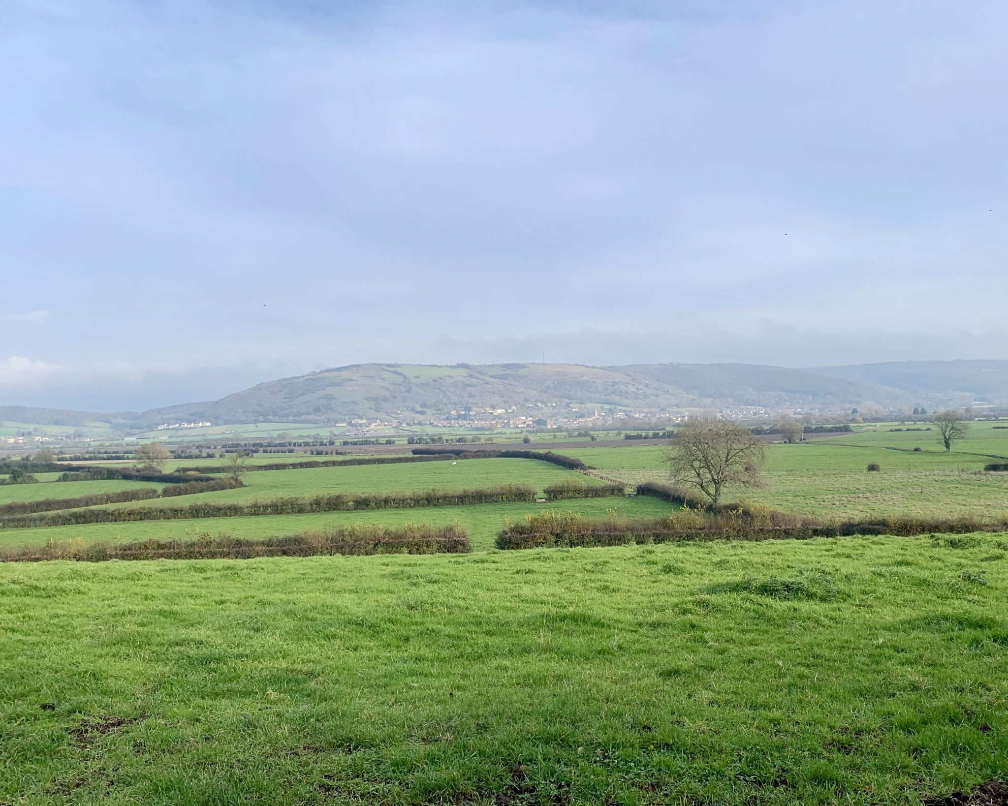 View from The Sett in Somerset