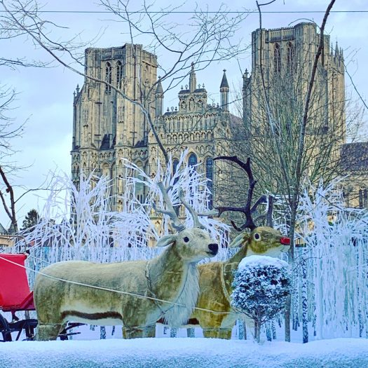 Wells Cathedral winter tableau