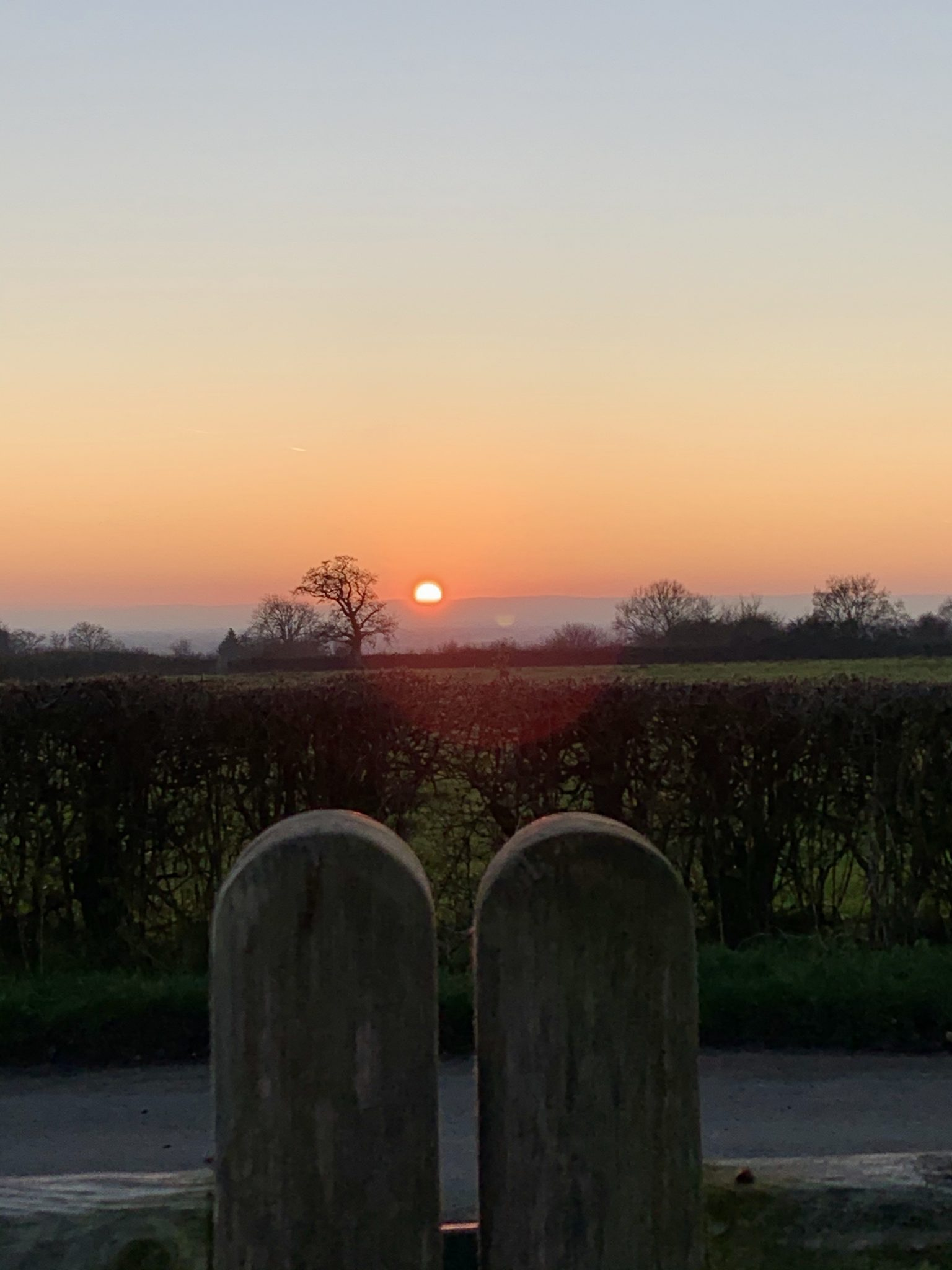 Sunset over the gate