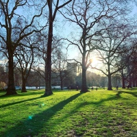 afternoon sunshine in London