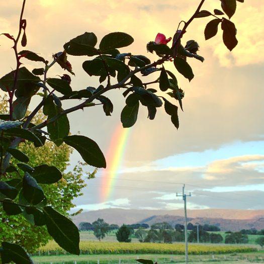 Rainbow in Autumn