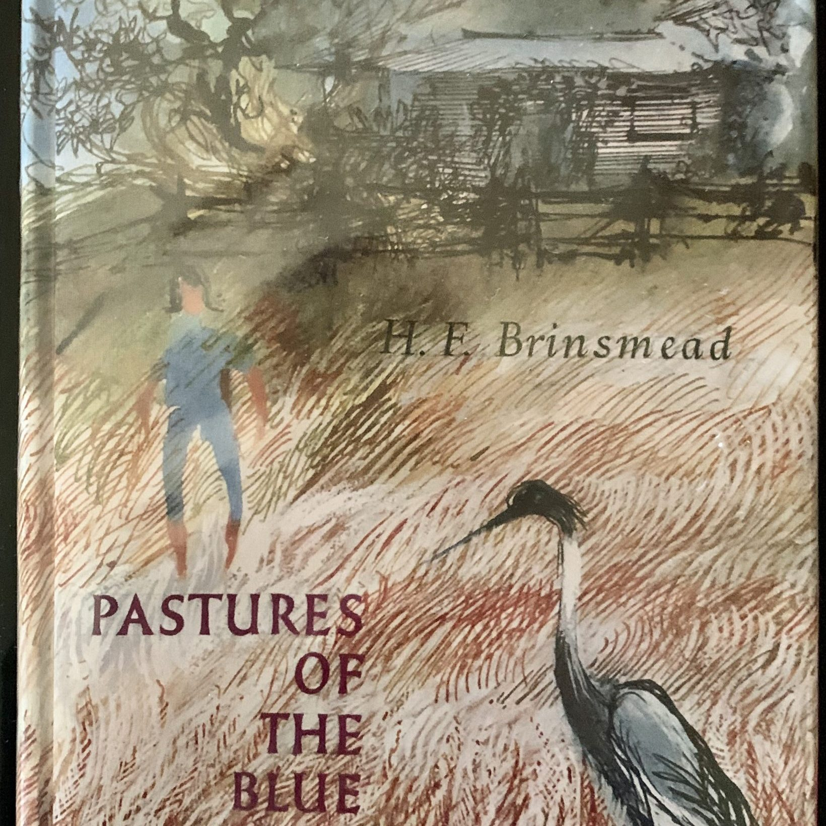 Pastures of the Blue Crane - a favourite book