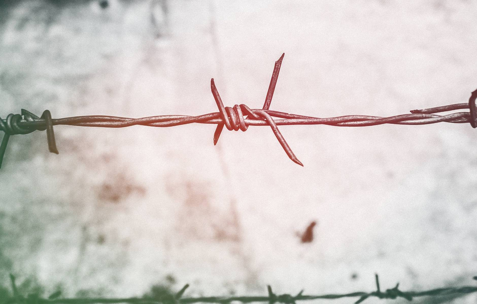 barb wires barbed wire blur border