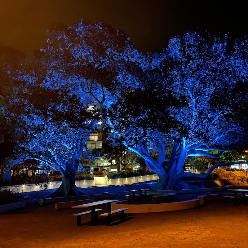 Night ride - Scarborough Beach Qld