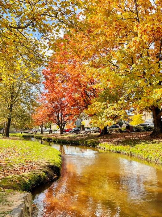 stunning autumn colours in Tumbarumba