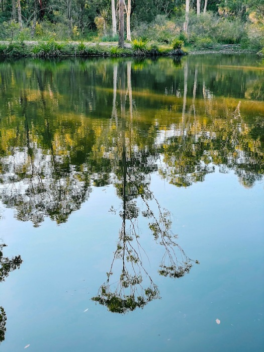 reflection in the water of the dam