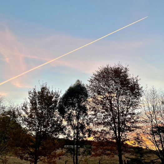 autumn sunset and plane trail