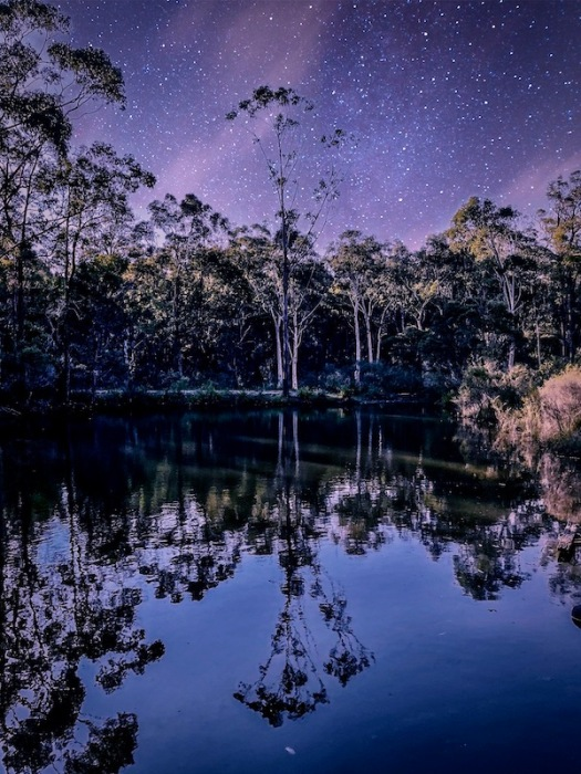 reflections and stars