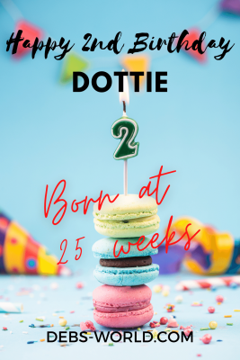 Dottie 2nd birthday pin