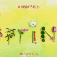 Nothing ever seems impossible in spring - #SundayStills